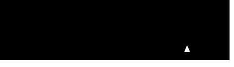 fast white cat logo